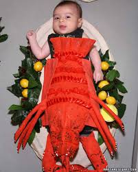 Lobster Costume Lobster Baby Costume Martha Stewart