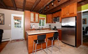 Track Lighting Ideas For Kitchen by Divine Home Cottage Kitchen Furniture Design Ideas Introduce
