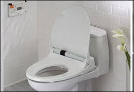 Bidet Toilet Seat Review Add On Bidets Toilet Seat Bidets Handheld Bidets And Travel