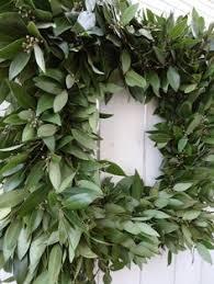 eucalyptus wreath fragrant wreath indoor wreath large wreath door