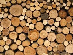 wood logs waxman academy