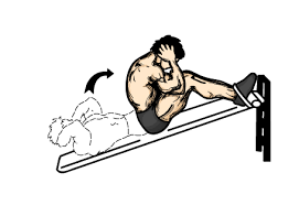 Incline Bench Muscle Group Vascular Muscle Pump Workout Routine