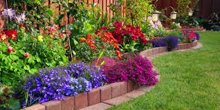 Ideas For Very Small Gardens by How To Plant A Small Garden Gardenabc Com