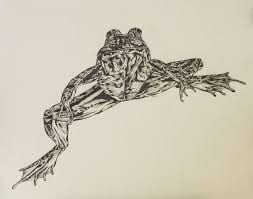 amphibian art exhibition in vancouver call for artists precious