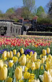 Botanical Gardens In Nc by 222 Best Biltmore House U0026 Gardens Images On Pinterest Biltmore