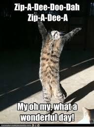 Zip Meme - 25 best memes about zip a dee doo dah zip a dee doo dah memes
