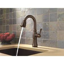 Venetian Bronze Kitchen Faucet by Kitchen Faucet Self Expression Delta Cassidy Kitchen Faucet