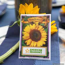 sunflower seed packets sunflower seed packet american
