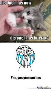 Cuteness Overload Meme - cuteness overload by saller meme center