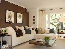 brown color contrast wall home decoration colour paint homes