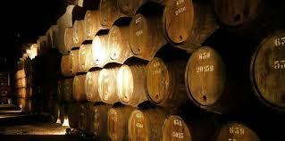 Wine Cellars Porto - douro valley wine tour from porto nattivus
