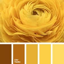 yellow color schemes color palette 3329 цветовой круг pinterest yellow color
