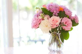 learn the best flowers for all occasions