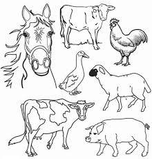 Coloriage Animaux de la Ferme dessin gratuit à imprimer