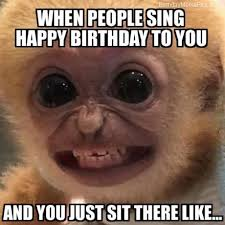 Silly Birthday Meme - i am here only for cake funny happy birthday meme