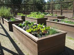 raised bed vegetable garden layout design focal point to be marked