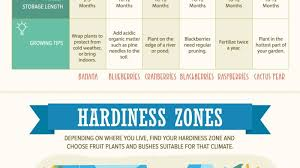 Weather Zones For Gardening - trees and plants to grow for an all year fruit garden