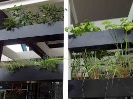 diy herb garden indoors image of home design inspiration