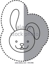 rabbit picture stock photos u0026 rabbit picture stock images alamy