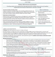 sample of professional resume resume samples and resume help
