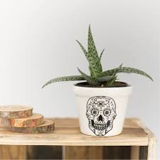 sugar skull planter utique the online gift boutique
