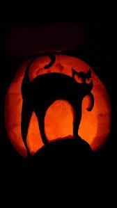 jack skellington halloween wallpaper 1705 best wallpaper halloween images on pinterest halloween