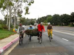 christmas tree shopping by bike living with the webers