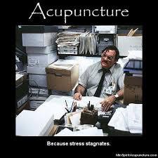 Acupuncture Meme - 14 best acupuncture humor images on pinterest acupressure