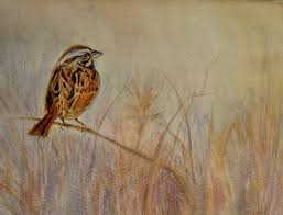 his eye is on the sparrow wetcanvas