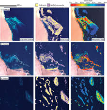 patterns of sedimentation in the contemporary red sea as an analog