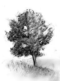 alone tree sketch by doubleagent2005 on deviantart