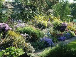 99 best garden images on pinterest landscaping flower gardening