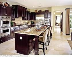 Dark Wood Kitchen Cabinets Home Design Styles - Dark kitchen cabinets