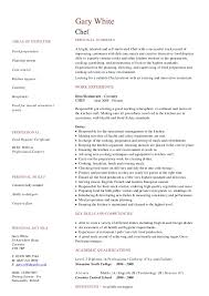 personal chef resume full size of resumecomputer skills software