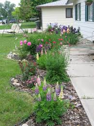 here are pics of my flower beds flowers lawn growing garden