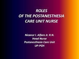 Pacu Nurse Job Description Resume by Roles Of The Postanesthesia Care Unit Nurse