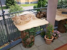 balkon katzensicher machen mein katzenbalkon wohnungshaltung katzenstadel de