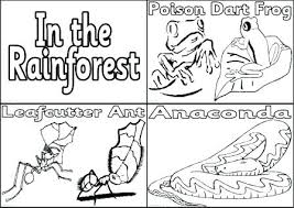free coloring page of the rainforest biomes coloring pages free coloring pages tundra biome animals