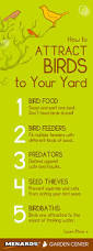 attract birds to your yard with these 5 simple tips read full