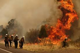 Wildfire In Arizona Kills 19 by Arizona Fires Mormons Mobilize To Help