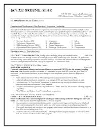 Freelance Resume Writer Jobs by Fanciful Executive Resume Writer 8 Account Executive Resume