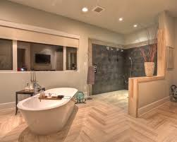 Bathroom With Open Shower Open Shower Bathroom Design With Goodly Open Shower Ideas Pictures