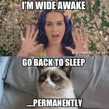 Grumpy Cat Sleep Meme - 30 very funny grumpy cat meme pictures and photos