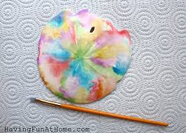 where to buy sand dollars at home watercolor painting on sand dollars