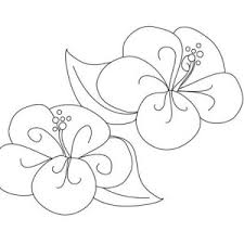 beautiful poppy flower coloring page color luna