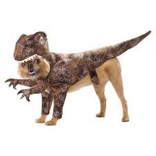 Pet Halloween Costumes Dogs Halloween Dog Costume Ideas 32 Easy Cute Costumes