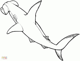 50 best free coloring page of a shark free printable shark