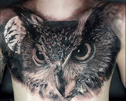 Owl Tattoos - 50 best owl designs and ideas