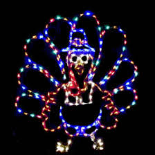 lighted yard thanksgiving lights