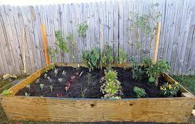 Backyard Vegetable Gardening by Best Of Backyard Garden Ideas 72775 Davidburge Backyard Vegetable